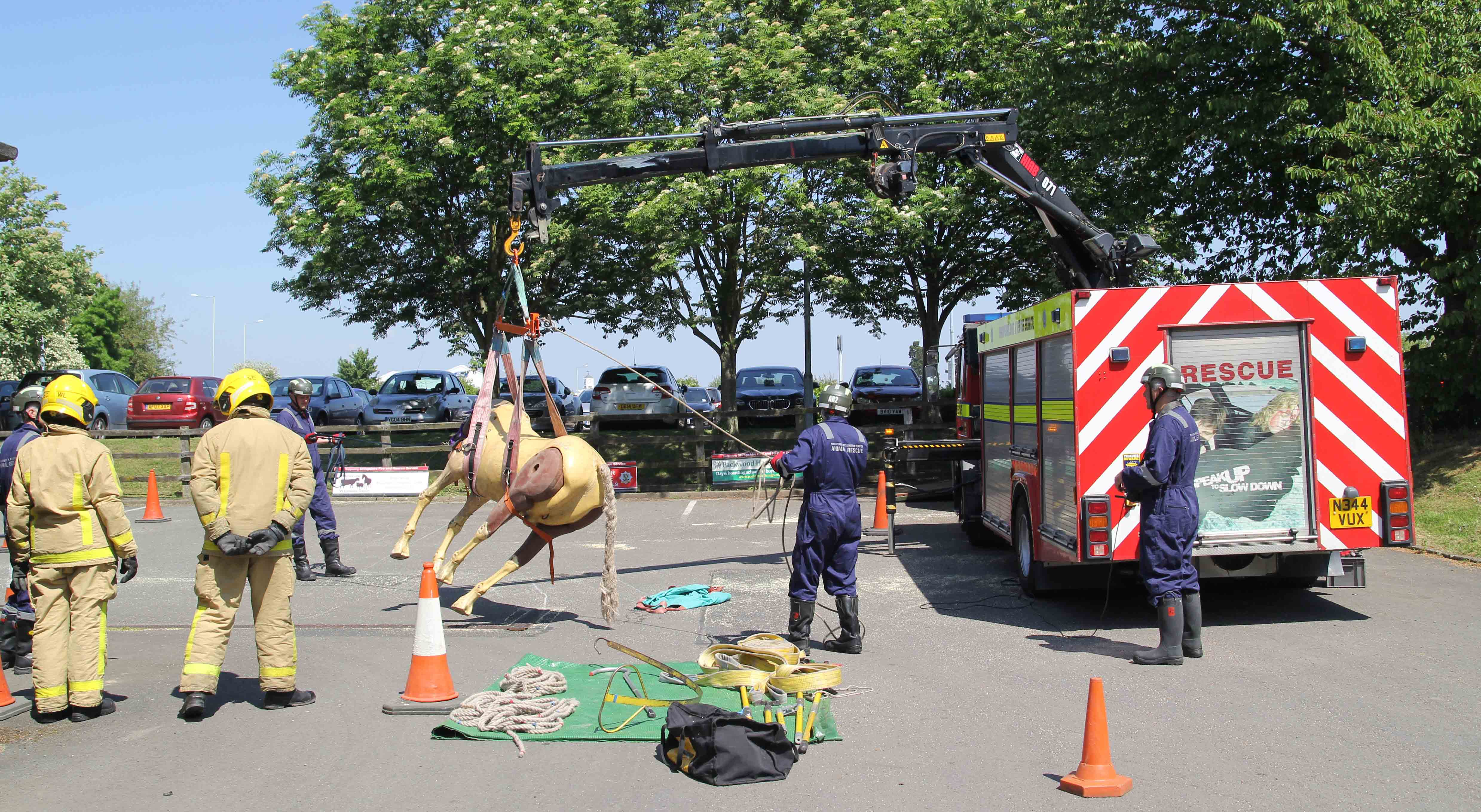 Red Watch Wellington demonstrate how they train to rescue animals at the anniversary celebrationss