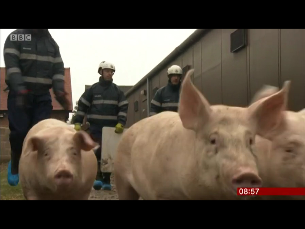 Firefighters learn how to deal with all sorts of animals