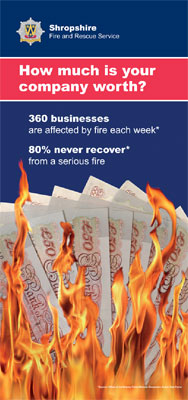 Screen grab of leaflet cover featuring money on fire