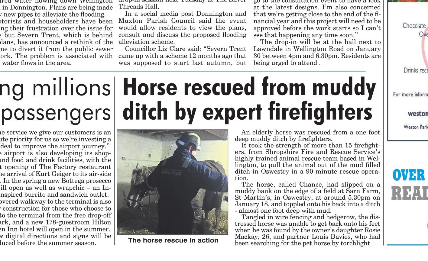 Shropshire Star report our story on the horse rescue