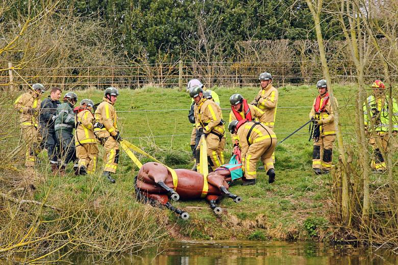Shropshire Fire and Rescue Service's animal rescue team pictured here in training with Bullseye, a dummy horse.